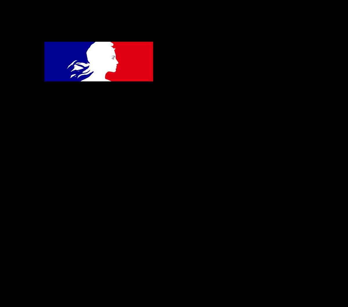 logo Ministère des armées
