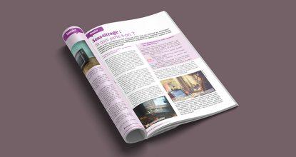 Article Rédigé Par Des Interprètes De L'écrit Du Messageur, Paru En Octobre 2020, Dans Un Dossier Sur Le Thème Du Sous-titrage
